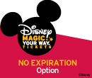 Disney Premim No Expiration Ticket