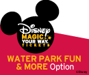 Disney Waterpark Fun and More Ticket