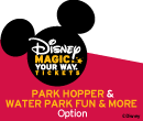 Disney Premium Ticket